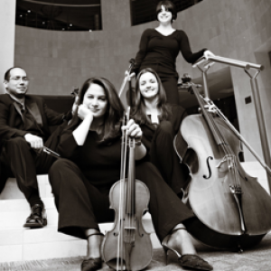 Charlotte Strings for Events - Classical Ensemble / Violinist in Charlotte, North Carolina