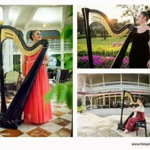 Chiara Capobianco harpist for events - Harpist / 1920s Era Entertainment in San Diego, California