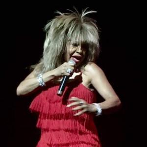 Chicago's Tina Turner - Tina Turner Impersonator / Impersonator in Chicago, Illinois