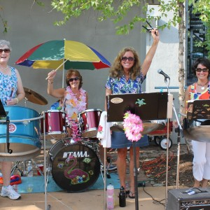 Chicks With Sticks Steel Drummers - Steel Drum Band in Auburn, Maine