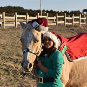 Christine Wilson Birthday Pony Parties