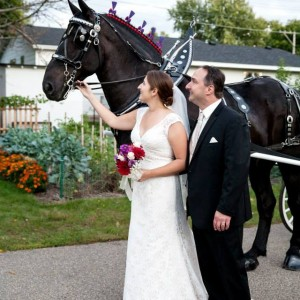 Cinderella Carriage LLC - Horse Drawn Carriage / Holiday Party Entertainment in Cashton, Wisconsin
