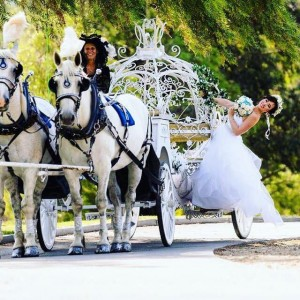 Cindy Cinderella Carriages - Horse Drawn Carriage in Riverside, California
