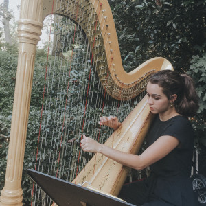 Classically Trained Harpist and Vocalist - Harpist / Classical Singer in Roswell, Georgia