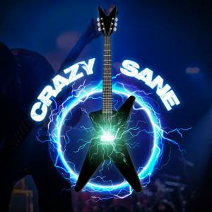 Crazy Sane - Cover Band / Classic Rock Band in Battle Creek, Michigan
