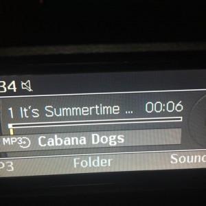 Cabana Dogs - Party Band in Sarasota, Florida