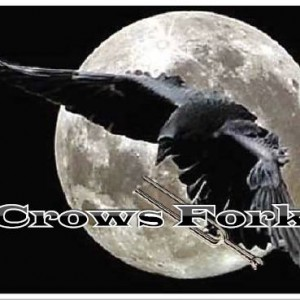 Crows Fork - Cover Band in Columbia, Missouri