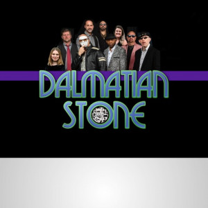 Dalmatian Stone - Funk Band in Grand Rapids, Michigan
