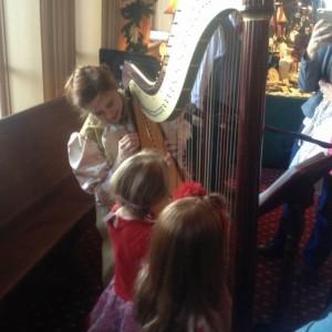 Darcy Bell-Myers Celtic Harpist & Singer - Harpist / Celtic Music in Stillwater, Minnesota