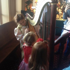 Darcy Bell-Myers Celtic Harpist & Singer - Harpist in Stillwater, Minnesota