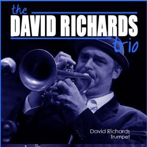 David Richards - Trio, quartet, quintet - Jazz Band / Holiday Party Entertainment in Clayton, North Carolina