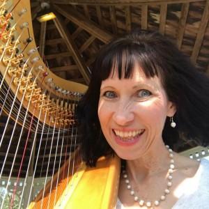 Dian Repp-Harpist - Harpist / Classical Ensemble in Manor, Texas