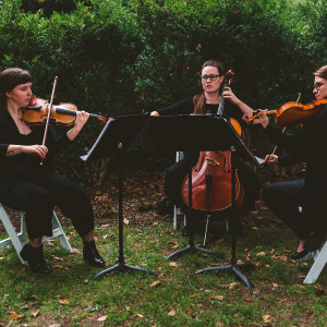 District Strings - String Quartet / Cellist in Washington, District Of Columbia