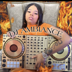 Dj Ambiance - DJ / Wedding DJ in Huntsville, Alabama
