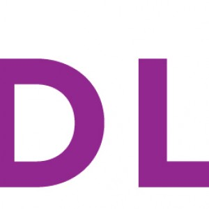 DL Events + Promotions - Event Planner in Fort Lauderdale, Florida