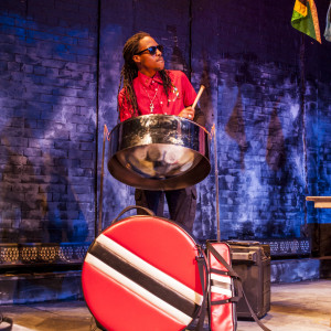 DoMo The Jack of All Trades - Steel Drum Player / Caribbean/Island Music in Manhattan, New York
