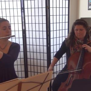 Codo Duo - Classical Ensemble / Classical Duo in York, Pennsylvania