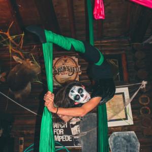 Dazzling Drake - Aerialist / Circus Entertainment in Fort Collins, Colorado
