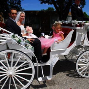Dream Coach Carriages - Horse Drawn Carriage in South Bend, Indiana