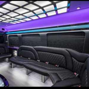 Dream Ride Luxury Transportation - Limo Service Company / Party Bus in Fort Lauderdale, Florida