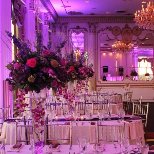 Dreamality Events - Event Planner in Bronx, New York