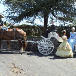 DSK Carriage - Horse Drawn Carriage in Porterville, California