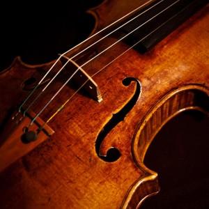 Elegant String Quartet - String Quartet in Montclair, New Jersey