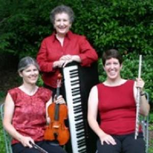 Elegant Echoes - Acoustic Band in Bethesda, Maryland