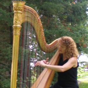 Elizabeth Borsodi, Harpist - Harpist / Celtic Music in Sarasota, Florida