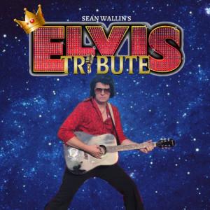 Elvis Tribute Artist - Sean Wallin