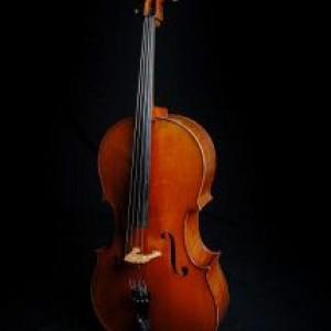 Encore Music London (String Quartet & Trio) - String Quartet / String Trio in London, Ontario