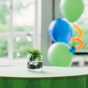 Events by Aneta - Event Planner in Stoughton, Massachusetts