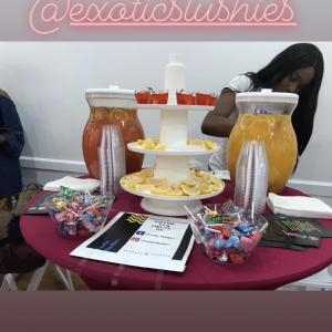 Exotic Slushies - Bartender in Brooklyn, New York