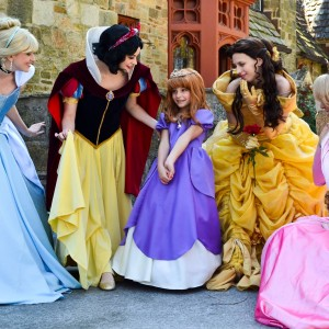 Faerie Fantastical Parties - Princess Party / Pirate Entertainment in Baltimore, Maryland