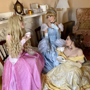 Regal Princess Parties - Princess Party / Children's Party Entertainment in Mansfield, Massachusetts