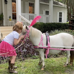 SonShine Pony Parties - Pony Party in Brooksville, Florida