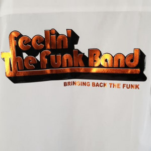 Feelin' The Funk Band - Funk Band / Dance Band in Fort Washington, Maryland