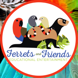 Ferrets and Friends, LLC - Animal Entertainment / Educational Entertainment in Baltimore, Maryland