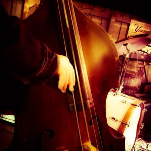 Florida Connection - Bluegrass Band in Orlando, Florida