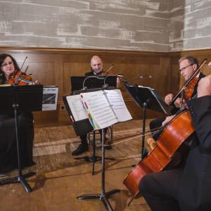 Forte Strings Quartet - String Quartet in Fort Worth, Texas