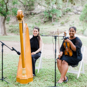 Harp of the Hills - Harpist / Classical Ensemble in Kyle, Texas
