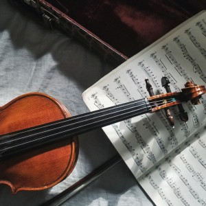 Friends with Strings - Classical Duo in Tampa, Florida