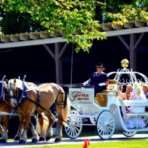 Fritz Farm Carriage Service - Horse Drawn Carriage / Holiday Party Entertainment in Williamsport, Pennsylvania
