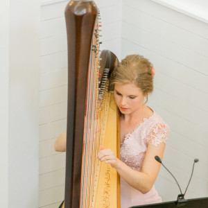 Glesni Mason - Harpist - Harpist in Careywood, Idaho