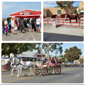 Global Livestock & Exotics - Horse Drawn Carriage / Petting Zoo in Norco, California