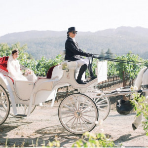 Grand Carriages - Horse Drawn Carriage in Livermore, California