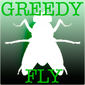 Greedy Fly - Tribute Band in Houston, Texas