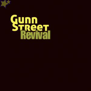 Gunn Street Revival - Acoustic Band in Milford, Connecticut