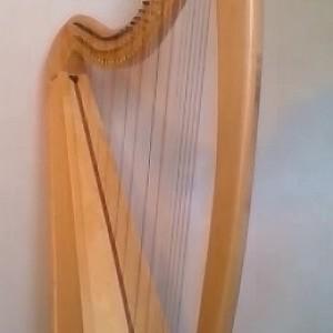 Hannah the Harpist - Harpist in Elk River, Minnesota