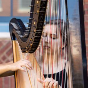 Joanna Lauer, Harpist - Harpist / Celtic Music in Lagrange, Ohio